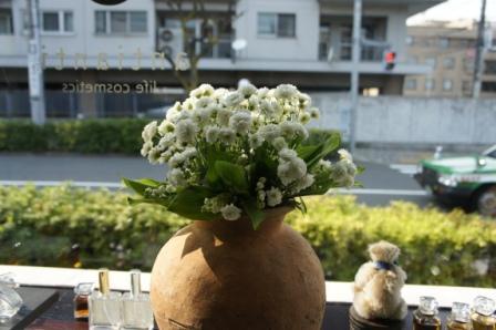 2011'4.11小壺.JPG