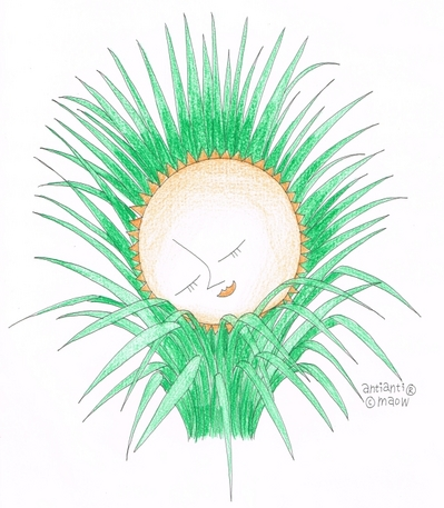 lomongrass.jpg